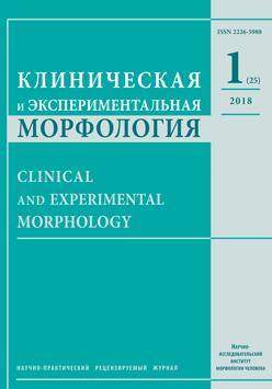 Клиническая и экспериментальная морфология. № 1 (25) / 2018